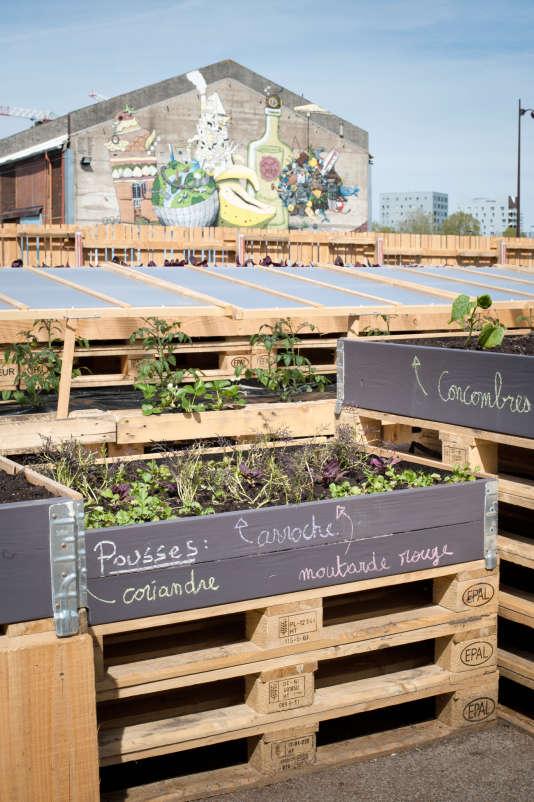 Tous les légumes duPotager composeront l'entrée de La Cantine, qui propose, 7 jours sur 7, un menu à 10 € le midi et à 13 € le soir.