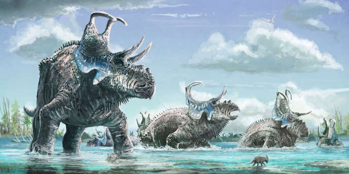 Ce dinosaure herbivore, qui devait mesurer de six à huit mètres de long et peser de une à deux tonnes, a été baptisé « Machairoceratops cronusi ».