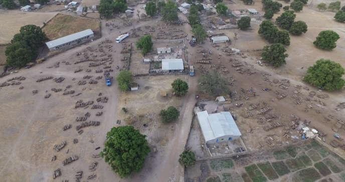 Photo tirée de la vidéo réalisée par un drone et qui révèle l'un des lieux de stockage du trafic illégal du bois de vène entre le Sénégal et la Gambie.