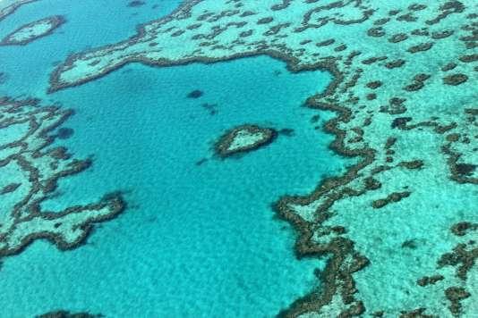 La Grande Barrière de corail, ennovembre2014.
