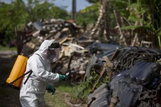 Un employé municipal asperge d'insecticideune décharge afin delutter contre la propagation du moustique vecteur du Zika à Jao Pessoa, le 22 février 2016.