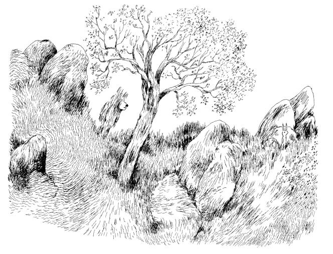 Gros ours et petit lapin, de Nyslo.