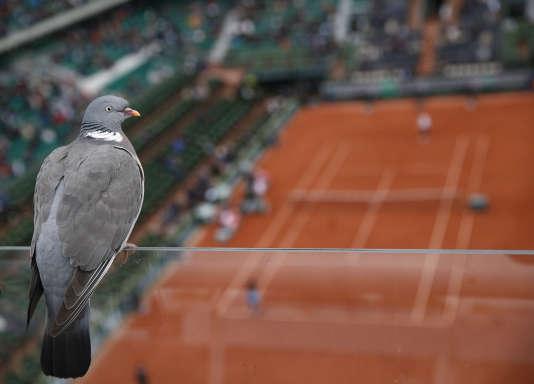 A Roland-Garros, le 3 juin.