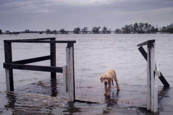 Une scène du documentaire français de Cyril Barbançon, Andy Byatt et Jacqueline Farmer, « Ouragan».