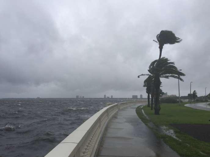 La tempête tropicale Colin a frappé la Floride, le 7 juin.