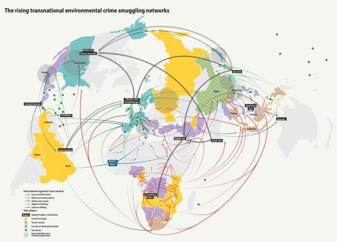 Les réseaux de trafics environnementaux dans le monde (en rouge, les trafics d'ivoire et de cornes de rhinocéros).