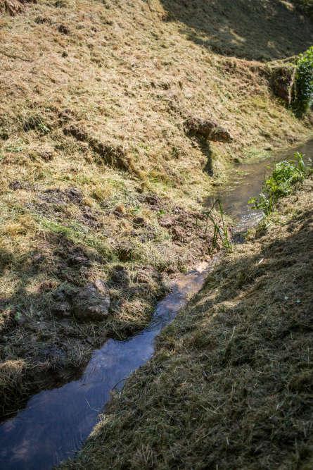 A certains endroits du bras mort, des berges ont bouché l'eau, obligeant le SIAVB pour permettre l'écoulement de l'eau.