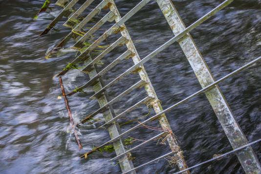 Grille de protection en aval du bassin des Bas près de Jouy-en-Josas. Ces grilles sont nettoyées quotidiennement en cas de crue, une fois par semaine en période calme.