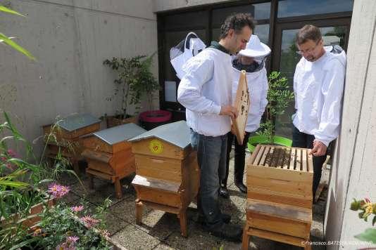 Volkan Tanaci (apiculteur référent), Jennifer Hallot et Dominique Céna dans le rucher de l'hôpital Robert-Debré.