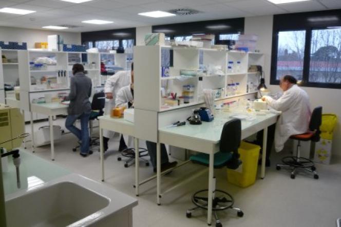 Pour ses recherches sur les maladies infectieuses, deux bourses européennes ont été attribuées à l'unité du CNRSde Montpellier que dirige Samuel Alizon, qui a refusé la prime individuelle qui lui était accordée.