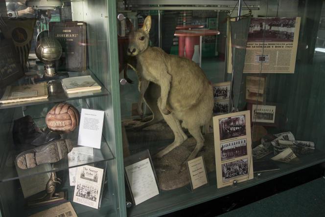 Une vitrine contenant des objets rappelant la carrière d'Antonin Panenka, dans les bureaux du stade des Bohemians 1905 à Prague.