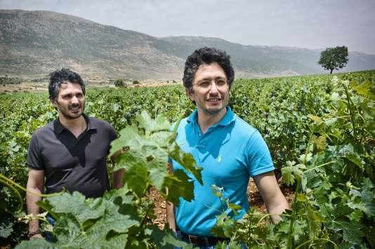 A la tête de deux domaines viticoles, l'un au Liban, l'autre en Syrie, les frères Saadé font un pari sur l'avenir.