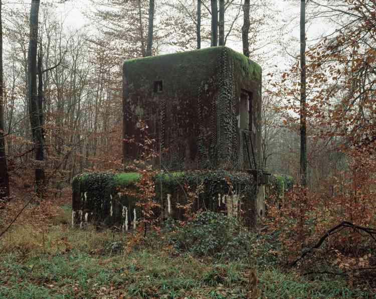 Contrairement aux autres petits blockhaus longeant la rivière Seltzbach, le blockhaus5 à Seltz (Bas-Rhin) est composé d'une tour bétonnée ajoutée sur le bloc.