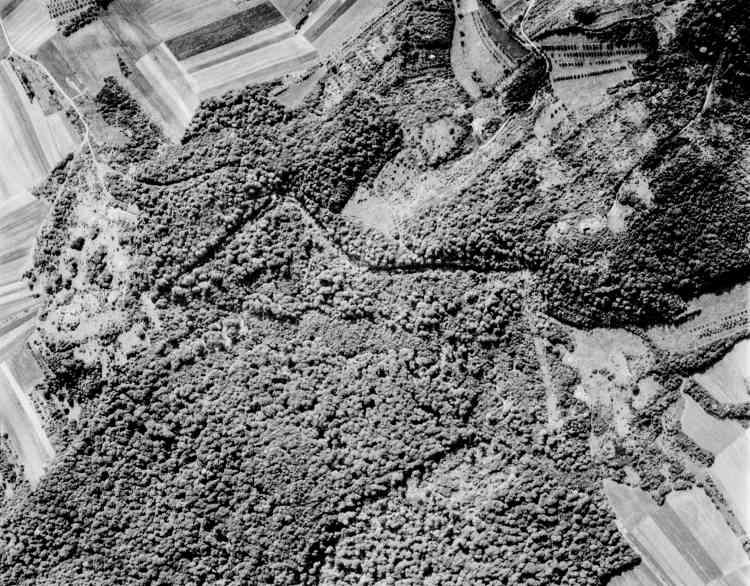 Vue aérienne de Hackenberg (détail).