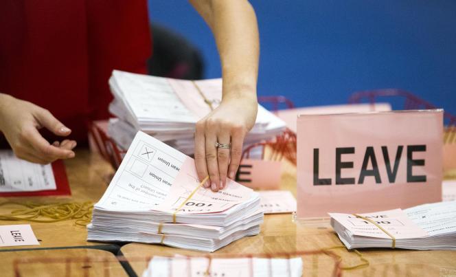 Dépouillement des bulletins de vote sur le Brexoit, à Belfast, le 23 juin.