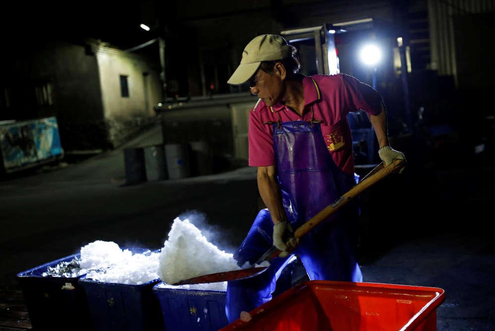 Les caisses en plastique qui contiendront la prise de la nuit sont remplies de glace.