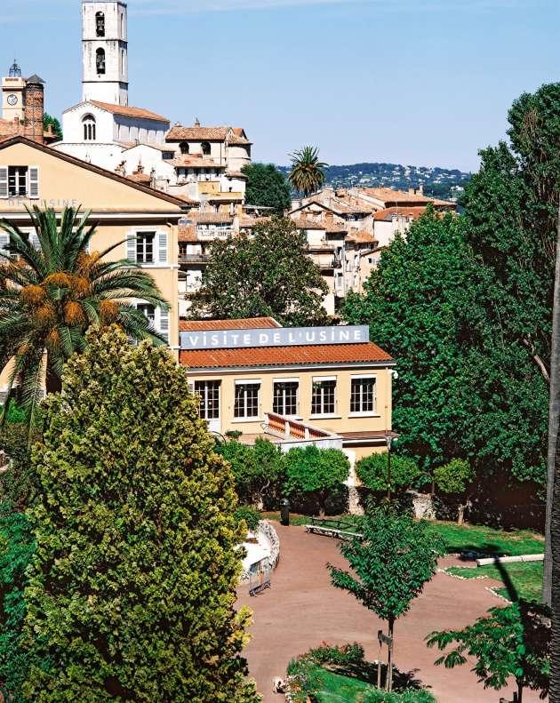 A Grasse, il ne reste aujourd'hui que 37 des quelque 850 hectares de champs à fleurs que la ville comptait dans les années 1950.