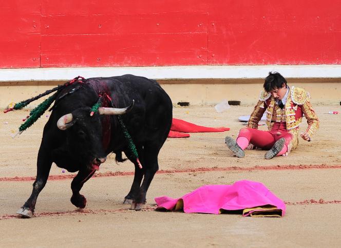L'interdiction de la corrida fait partie des sujets que 26 ONG veulent installer dans le débat politique.