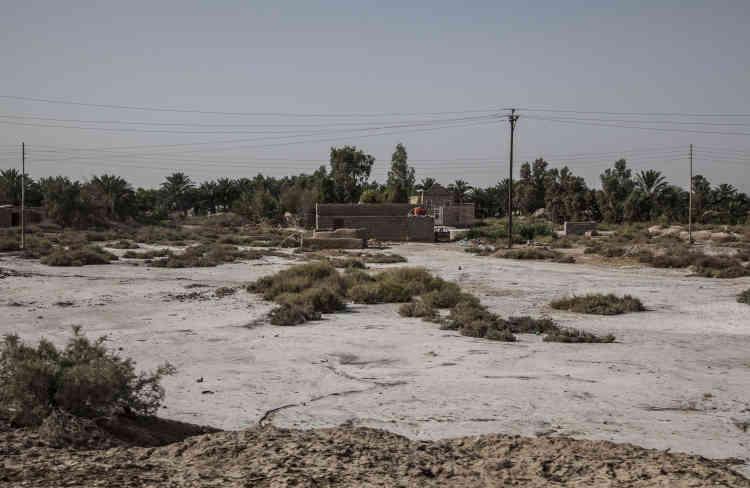 Pour venir à bout des rebelles chiites qui y avaient pris le maquis après 1991, Saddam Hussein a asséché ces marais inaccessibles à ses chars. En 2003, la population a détruit digues et canaux. Les marais n'ont retrouvé que 40 % de leur étendue originelle.