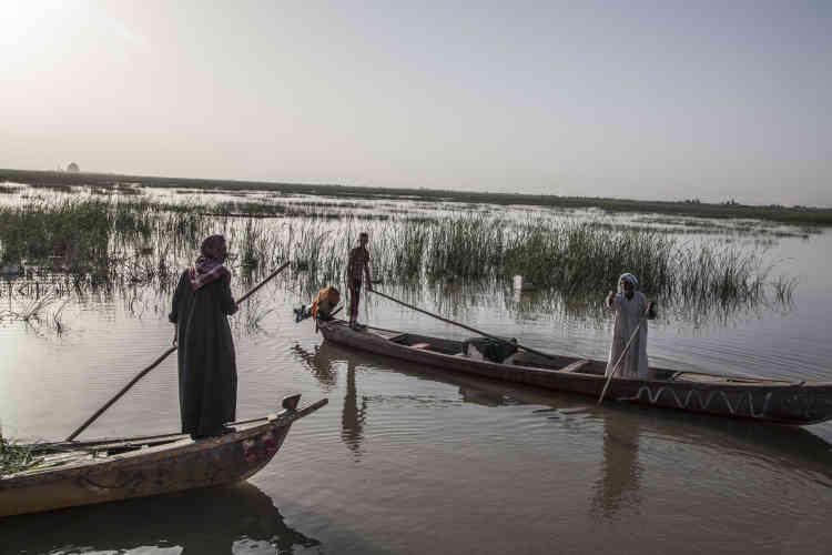 Les habitants des marais en connaissent tous les recoins par coeur. Leurs longues barques effilées à moteur fendent les voies d'eau entre les roseaux à grande vitesse.
