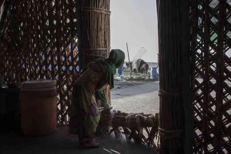 Les maisons en palme tissées doivent être restaurées tous les huit à dix ans.