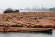 Rien qu'en Russie, la taïga a perdu en moyenne 1,4 million d'hectares de paysages forestiers intacts non fragmentés (IFL) par an entre 2000 et 2013.