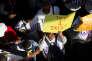 « Tester et traiter », affiche une manifestante lors de la Marche contre le sida, à Durban (Afrique du Sud), le 16 juillet.