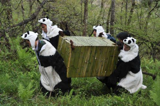 Faux pandas.