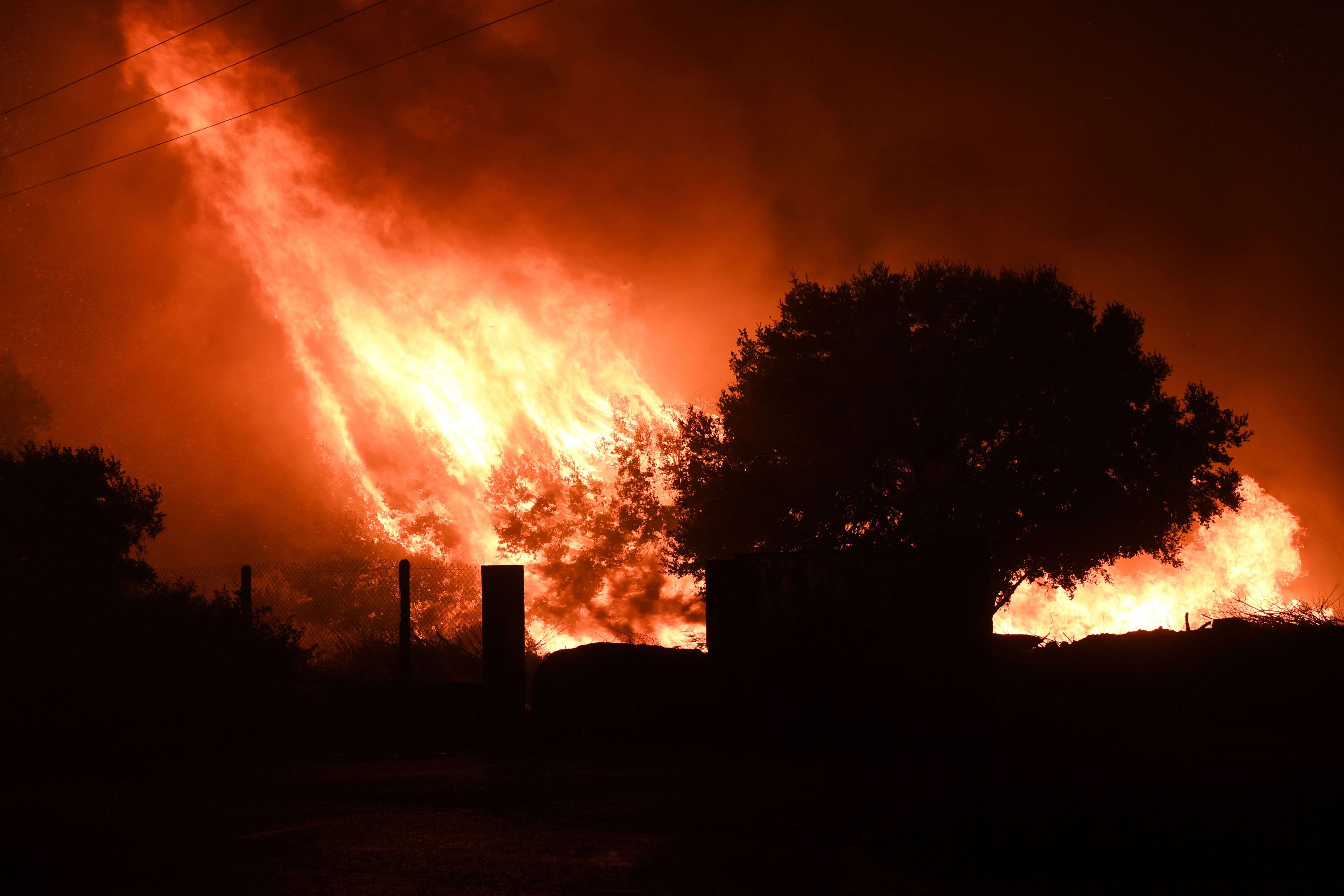 Scène d'incendie àVitrolles, d'où plus d'un millier de personnes ont été évacuées mercredi 10 août.