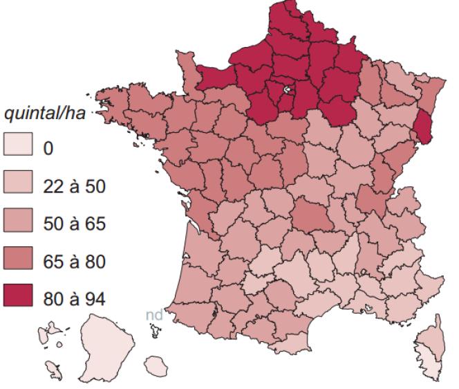 La moyenne française pour le rendement des cultures de blé tendre était de 75 quintaux à l'hectare en 2014.