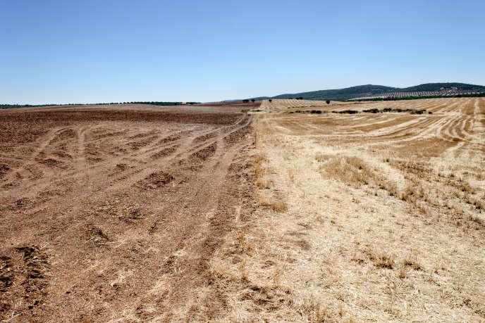 Quantum estime qu'elle pourrait extraire trois kilos de monazite pour chaque tonne de terre du gisement,dans les champs d'une centaine de petits agriculteurs à qui elle a parlé d'acheter ou de louer leurs terres à bon prix.