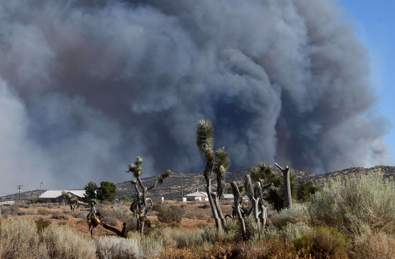 Une vague de chaleur associée à la sécheresse persistante favorise la propagation des feux.
