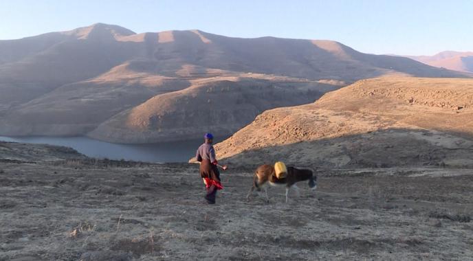 Une habitante de Katse au Lesotho ramenant de l'eau avec son âne le 14 juillet 2016.