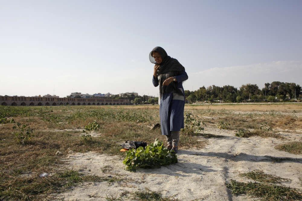 Depuis l'élection de Hassan Rohani, en juin 2013, la défense de l'environnement est devenue l'une des priorités du gouvernement. « Sous Ahmadinejad, il n'était pas question de protéger l'environnement, explique Shahnaz Zargham, une militante écologiste à Ispahan dans le lit du fleuveZayandeh Roud, le 14 août.