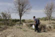 Iran, Varzaneh, 15 août 2016 Hadj Abassi 89 ans, dans son champ de grenades sèches. L'eau douce du fleuve Zayanderood - Zayenderoud servait à arroser ses champs, mais depuis la sécheresse, Il arrose ses arbres avec de l'eau provenant de puits salés. Isabelle Eshraghi / Agence VU