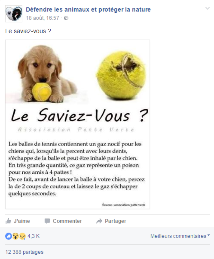 Capture d'écran du message alarmiste sur le «gaz nocif» pour les chiens dans les balles de tennis.