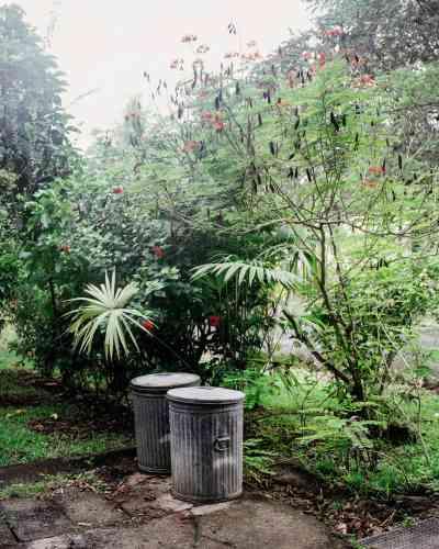 Le jardin de Joe Andrews sur leshauteurs de Curundu.Né en 1950,cet ancien soldat américain a, comme son père et son grand-père avant lui,été envoyéau Panama pour superviser la zonedu canal. Ilvit aujourd'hui dans cette anciennebase militaire devenue quartier résidentiel.