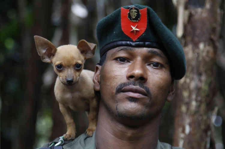 Un combattant du 48e front des Forces armées révolutionnaires de Colombie (FARC) pose avec son chien, dans la partie sud de la jungle de Putumayo, le 13 août 2016.