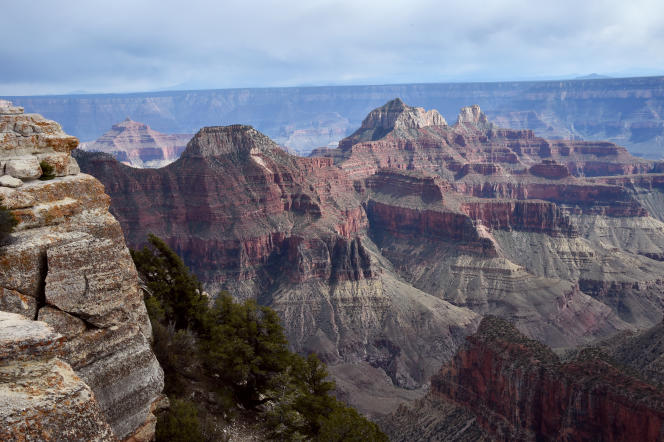 Un vue du « North Rim » dans le Grand Canyon le 18 mai 2015.
