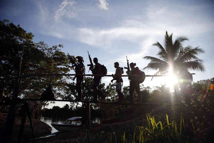 Les FARC n'ont jamais fourni d'informations sur leurs effectifs. Selon l'armée colombienne, ils seraient huit mille.