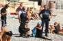 A Nice, des policiers municipaux verbalisent une femme voilée, le 23 août. Publiée par le quotidien britannique « Daily Mail », la photo a créé la polémique.
