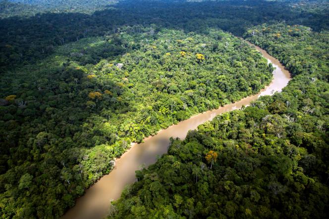 Une vue de l'Amazonie en Guyane française,en 2012.