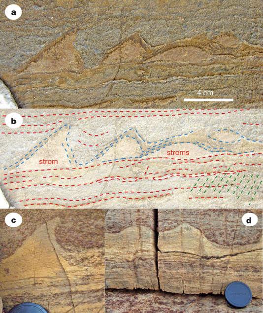 Les stromatolites du Groenland (a) présentent des feuillets internes caractéristiques (b) (lignes en pointillé bleu), coincés entre des dépôts sédimentaires (en pointillé rouge). Ces formes sont identiques à des stromatolites de 2,4 milliards d'années, découverts en Australie (c et d).