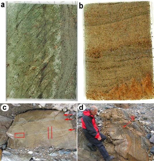Les roches sur lesquels des stromatolites ont été découverts au Groenland
