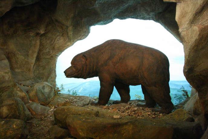 Reconstitution d'unours des cavernes au Musée d'histoire naturelle de Bâle.