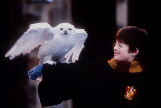 Daniel Radcliffe dans le rôle d'Harry Potter lors du tournage d'« Harry Potter à l'école des sorciers».