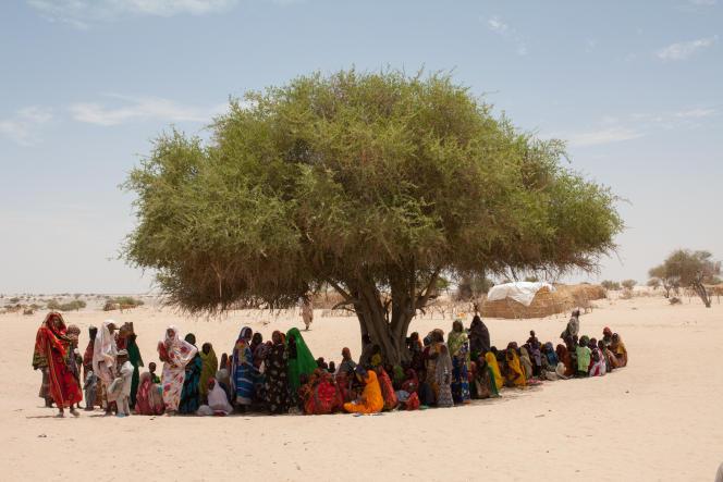 Sous, le grand savonnier, où se regroupent les femmes du village de Koudouboul, au Tchad, qui accueilli 800 personnes d'un village voisin touché par les exactions de Boko Haram.