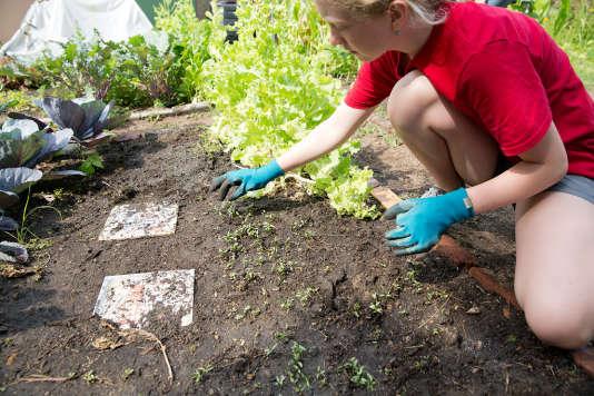 Education à l'environnement dans une école aux Etats-Unis, en mars.