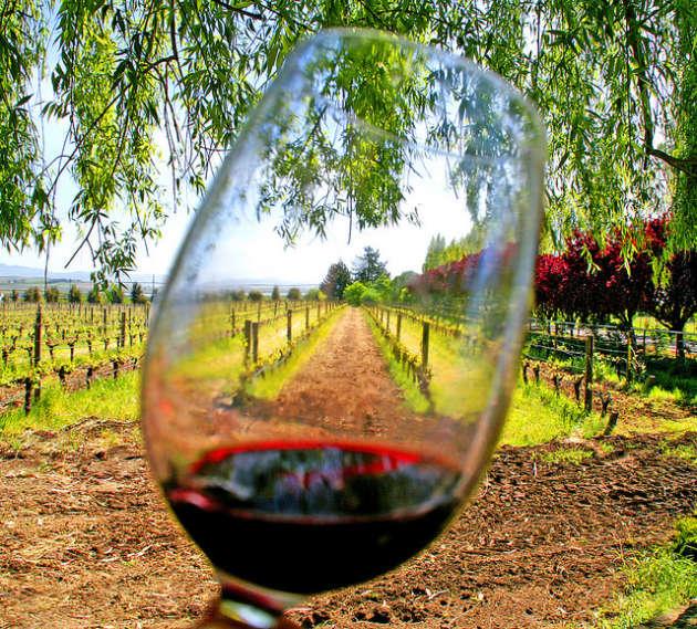Une quarantaine d'ouvrages paraissent en septembre, mois béni car celui des vendanges et des foires aux vins.