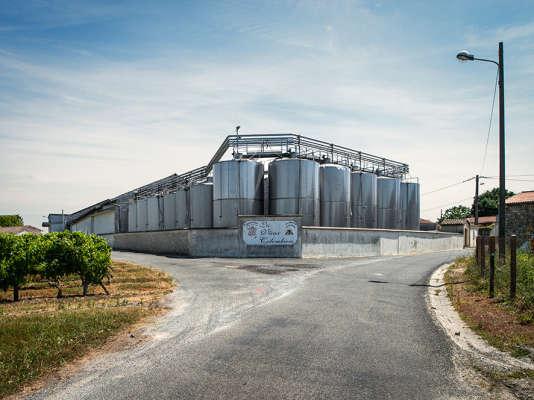 Premier producteur de l'appellation médoc,la coopérative Uni-Médoc compte 180exploitants donc la cave Les Vieux Colombiers, à Prignac.